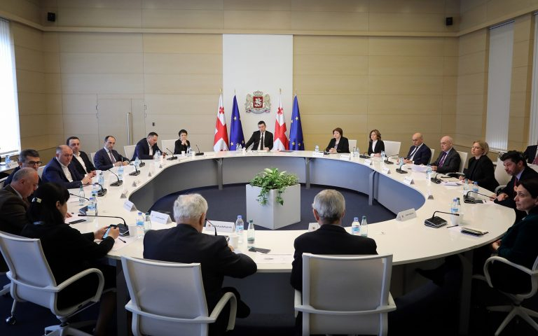 Universal Quarantine, Government of Georgia, Coordination Council
